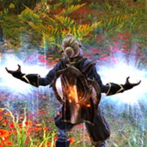Kingdoms of Amalur Reckoning - Magie