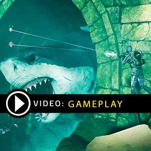Last Tide Gameplay Video