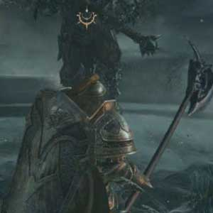 Lords of the Fallen Anbeter