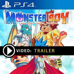 Monster Boy and the Cursed Kingdom PS4 Digital Download und Box Edition