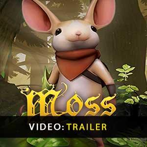 Moss Key kaufen Preisvergleich