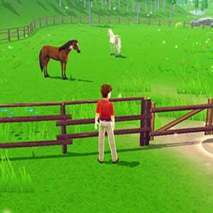 Verwöhnende Pferde