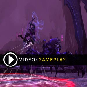 Neverwinter Gameplay