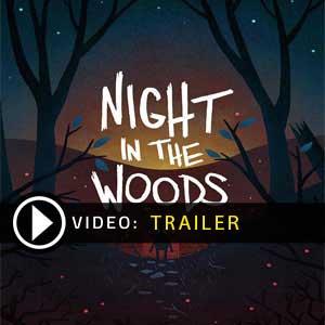 Night in the Woods Key Kaufen Preisvergleich
