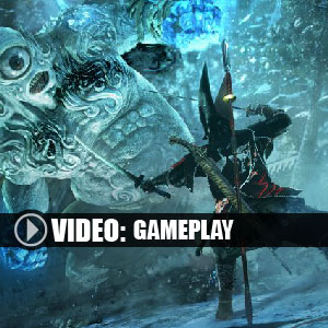 Nioh Gameplay Video
