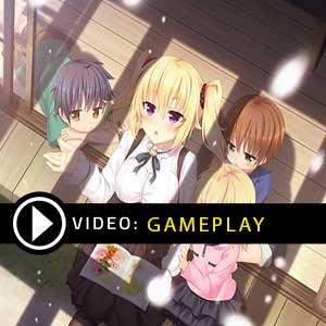Nora to Oujo to Noraneko Heart 2 Nintendo Switch Gameplay Video