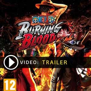 One Piece Burning Blood Key Kaufen Preisvergleich