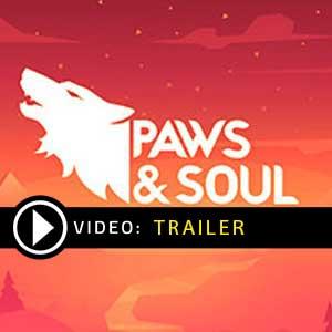 Paws and Soul Key kaufen Preisvergleich