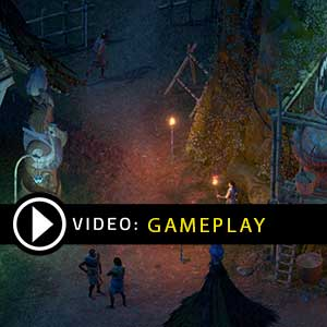 Pillars of Eternity 2 Deadfire Nintendo Switch Gameplay Video