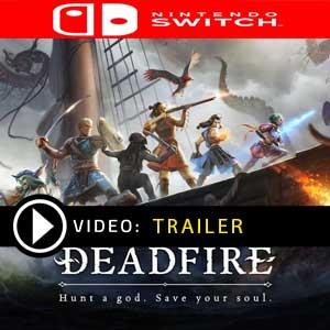 Pillars of Eternity 2 Deadfire Nintendo Switch Digital Download und Box Edition