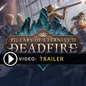 Pillars of Eternity 2 Deadfire Key Kaufen Preisvergleich