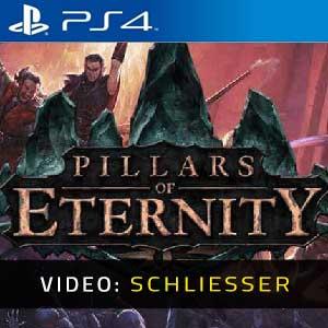 Pillars of Eternity PS4 Video Trailer