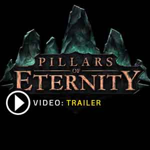 Pillars of Eternity Key Kaufen Preisvergleich