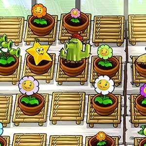 Wachsen Sie Ihr eigenes Zen Garden
