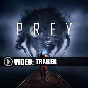 Prey 2017 Key Kaufen Preisvergleich