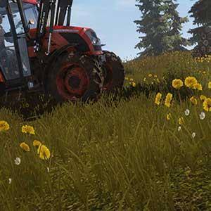 Globale Landwirtschaft