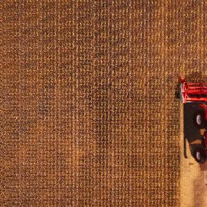 Landwirtschaftliche simulation