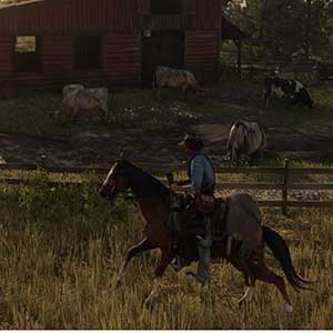 Red Dead Redemption 2 Pferde reiten