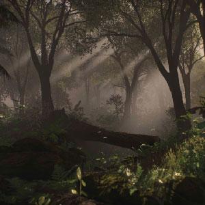 Rising Storm 2 Vietnam Spielumgebung