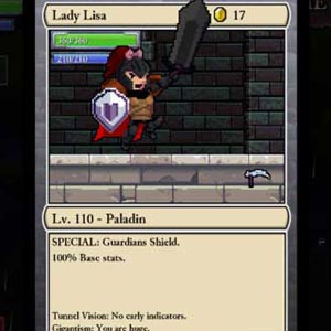 Rogue Legacy Charakter
