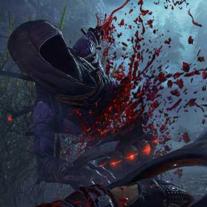 Shadow Warrior 2 Enemies