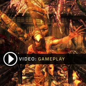 Shadow Warrior Xbox One Gameplay Video