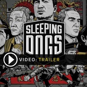 Kaufen Sleeping Dogs CD Key Preisvergleich