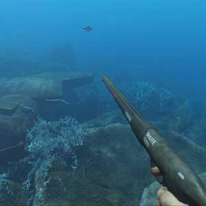 Stranded Unterwasserfischen