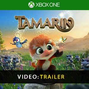 Kaufe Tamarin Xbox One Preisvergleich