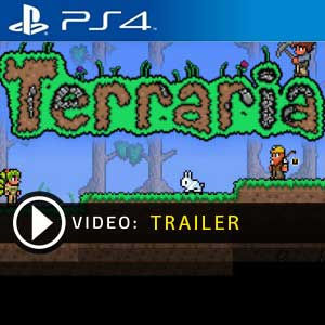 Terraria PS4 Digital Download und Box Edition