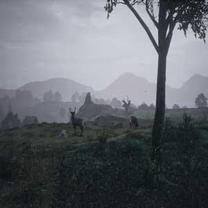 The Black Death Mittelalterliche Land