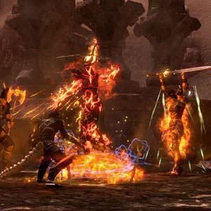 The Elder Scrolls Online Kampf