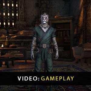 The Elder Scrolls Online Elsweyr Gameplay-Video