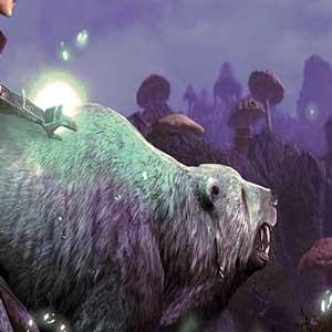 The Elder Scrolls Online Morrowind Kampf