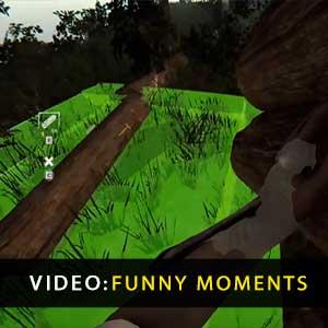Der Wald Lustige Momente