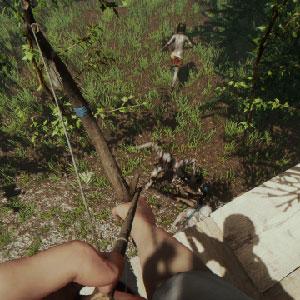 Der Waldzombie
