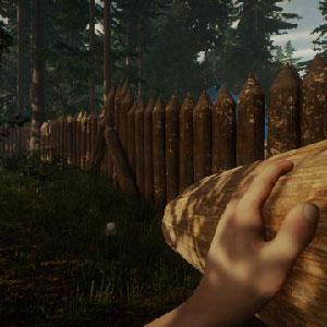 The Forest Überleben