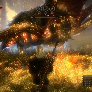 The Witcher 2 Assassins of Kings Screenshot