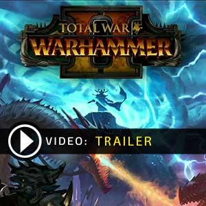 Total War Warhammer 2 Key Kaufen Preisvergleich