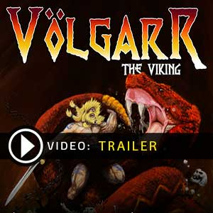 Volgarr the Viking Key Kaufen Preisvergleich