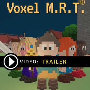 Buy Voxel M.R.T. CD Key Compare Prices