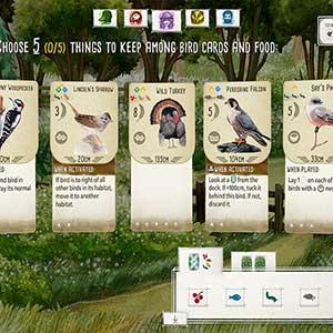 Wingspan - Vogel-Karten