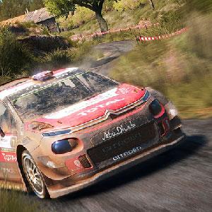 WRC 2017 Autos