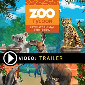 Zoo Tycoon Ultimate Animal Collection Key kaufen Preisvergleich